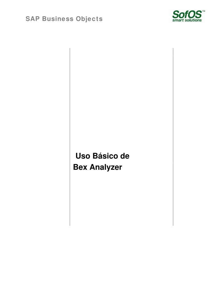 Imágen de pdf SAP Business Objects - Manual Usuario Bex Analyzer