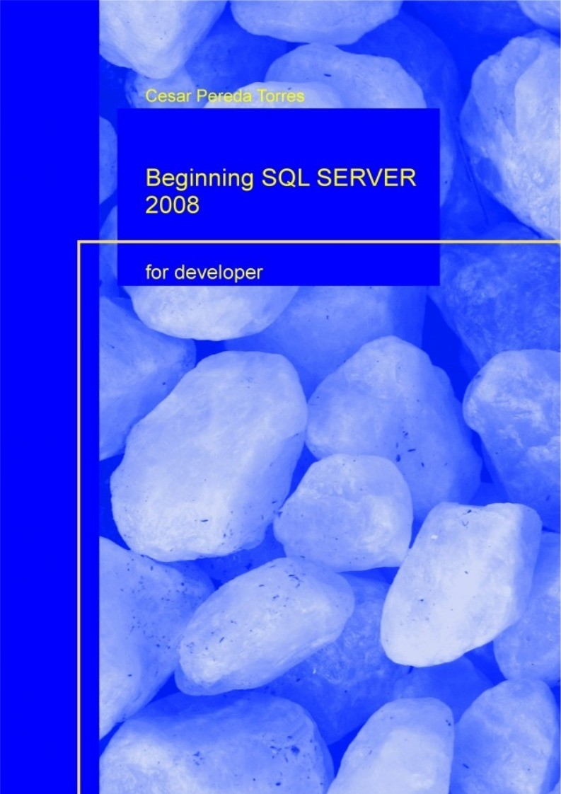 Imágen de pdf Beginning SQL SERVER 2008 for Developer